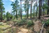4700 Copper Basin (8 Acres) Road - Photo 15