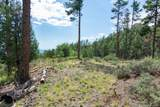 4700 Copper Basin (8 Acres) Road - Photo 16