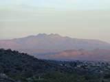 14310 Desert Tortoise Trail - Photo 2