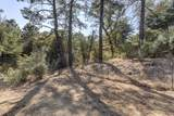 4867 Deer Trail - Photo 8
