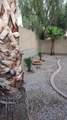 17234 Desert Lane - Photo 32