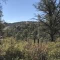 19600 Model Creek Road - Photo 7