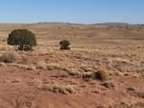 Carrizo Ranches Lot 297 - Photo 1