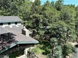 29 Ramsey Canyon Road - Photo 6
