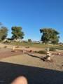 11022 Acacia Drive - Photo 19
