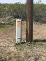 23102 Sandia Road - Photo 2