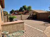 12953 Vista Paseo Drive - Photo 22