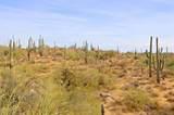 11132 Harris Hawk Trail - Photo 18