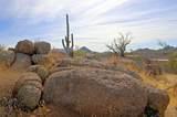 11132 Harris Hawk Trail - Photo 20