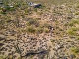 11132 Harris Hawk Trail - Photo 29