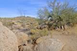 11132 Harris Hawk Trail - Photo 3