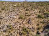11132 Harris Hawk Trail - Photo 41