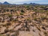 11132 Harris Hawk Trail - Photo 44