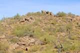 11132 Harris Hawk Trail - Photo 6
