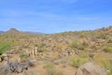 11132 Harris Hawk Trail - Photo 8