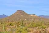 11132 Harris Hawk Trail - Photo 9
