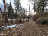 8309 Fossil Creek Road - Photo 10
