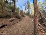 8309 Fossil Creek Road - Photo 12