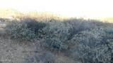 875 Grants Woods Parkway - Photo 13