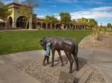 12625 Saguaro Boulevard - Photo 2