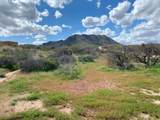 137xx Dove Valley Road - Photo 4