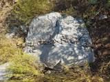 TBD Mountain Lion Pass - Photo 5