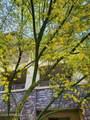 4803 Woodmere Fairway - Photo 64