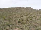 0 Elephant Butte Road - Photo 13