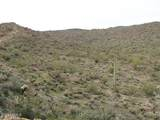 0 Elephant Butte Road - Photo 14