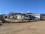5654 Desert Tortoise Lane - Photo 1