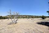 41210 Az-261 Road - Photo 128