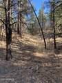 2732 Canyon View Drive - Photo 10