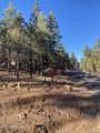 2732 Canyon View Drive - Photo 13