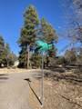 2732 Canyon View Drive - Photo 14