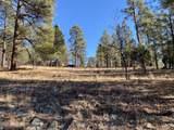 2732 Canyon View Drive - Photo 4