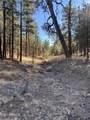 2732 Canyon View Drive - Photo 5