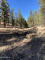 2732 Canyon View Drive - Photo 6