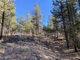 2732 Canyon View Drive - Photo 9