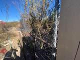 TBD Off Cholla Trail - Photo 12