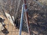 TBD Off Cholla Trail - Photo 2