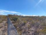 TBD Off Cholla Trail - Photo 4