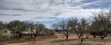 1030 Barrel Cactus #203 Ridge - Photo 4