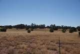 5184 Coyote Trail - Photo 1