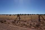 5184 Coyote Trail - Photo 2