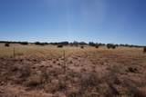 5184 Coyote Trail - Photo 3