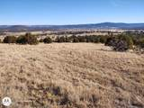 102 Mule Track Road - Photo 3