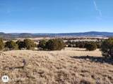 102 Mule Track Road - Photo 4