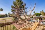 6229 Lone Cactus Drive - Photo 29