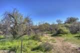 14001 Dove Valley Road - Photo 2