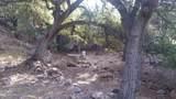 2833 Hidden Meadow Lane - Photo 53